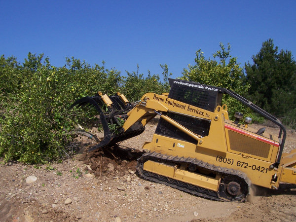 Grapple rake used to push trees over then lift rootball out