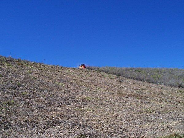 Hillside Brush - After